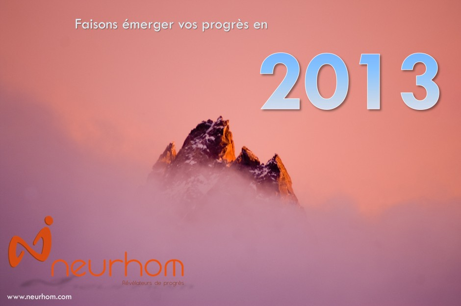 Carte voeux 2013 Neurhom